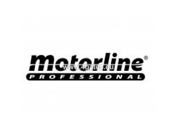 MOTORLINE PROFESSIONAL